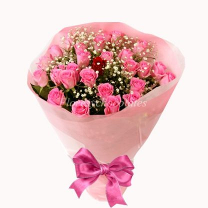 24 Rosas Rosadas Promocion