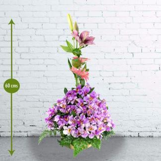 Arreglo Floral en Orquídeas