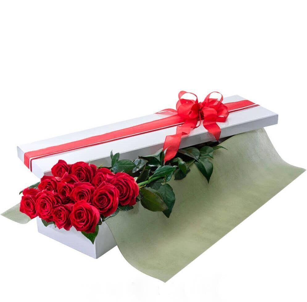Caja De 24 Rosas Bogota