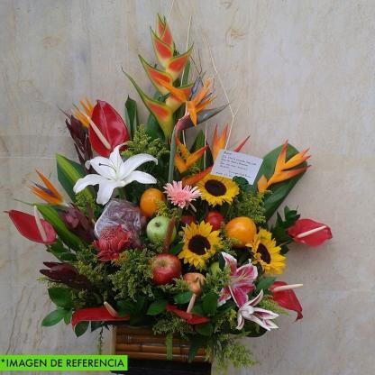 Floristeria Bogota ► Frutero Amely