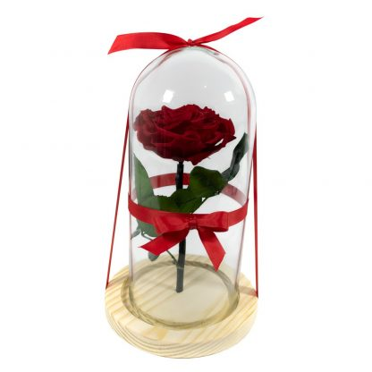 Rosa Roja Encantada Urna Rosa Roja Encantada Urna