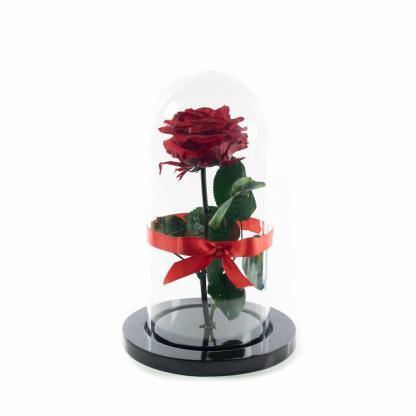 Rosa Roja Encantada Urna