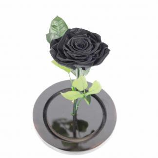 Rosa Negra Premium Urna