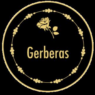 Arreglos en Gerberas
