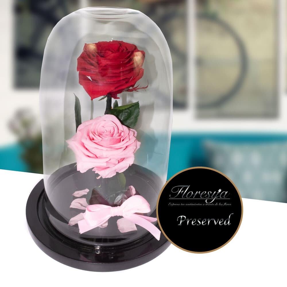 Rosa Eterna Luxury 2021