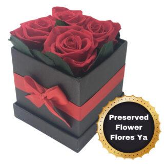 Caja Rosas Encantadas Rojas
